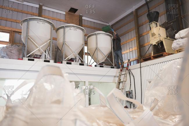 Man putting grains in grain elevator at factory