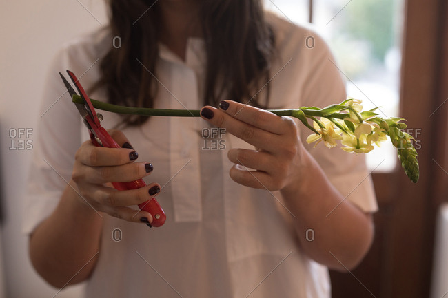 Mid section of woman cutting stem of flower at home