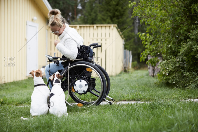 Disabled young woman on wheelchair looking at dogs in yard