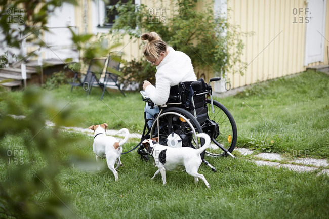Young disabled woman in wheelchair with dogs in yard