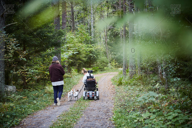 Rear view of young male caretaker with disabled woman and dog in forest