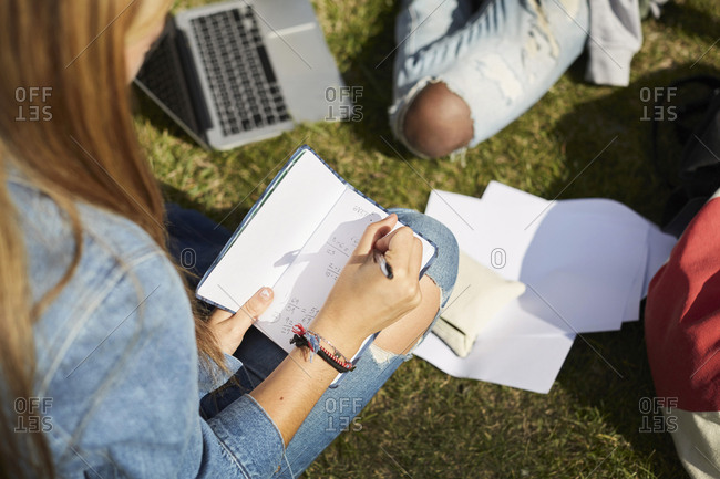 Friends studying while sitting on grassy field at university campus