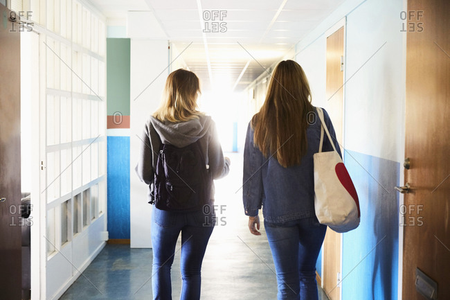Rear view of friends walking in corridor at university on sunny day