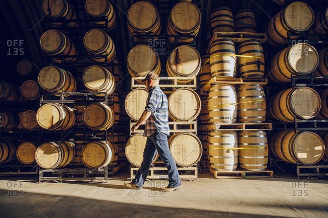 Caucasian man walking near barrels in distillery