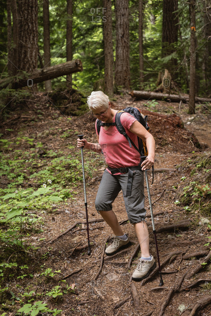 Mature woman with hiking poles walking in the forest