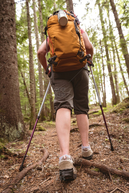 Rear view of mature woman walking with hiking poles in the forest