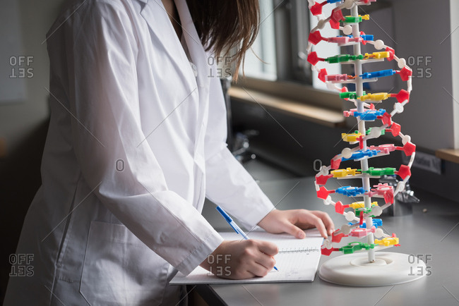 Mid section of university student experimenting molecule model in laboratory