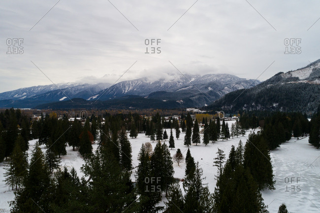 Aerial of coniferous trees on snowy landscape surrounded with mountains