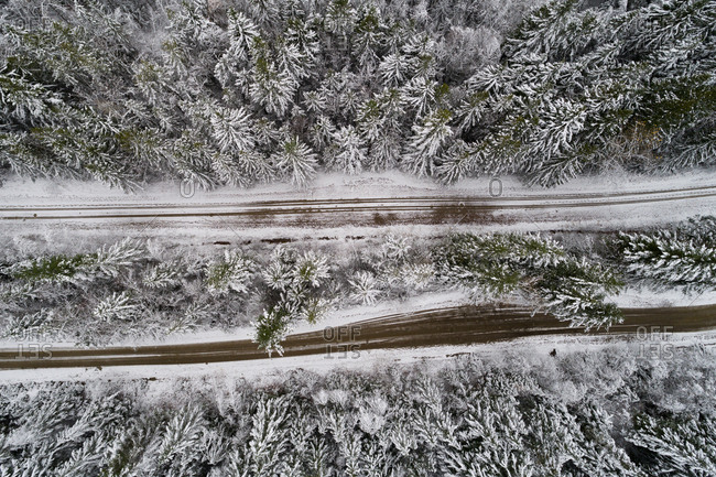 Overhead view of dirt track passing through snow covered coniferous forest
