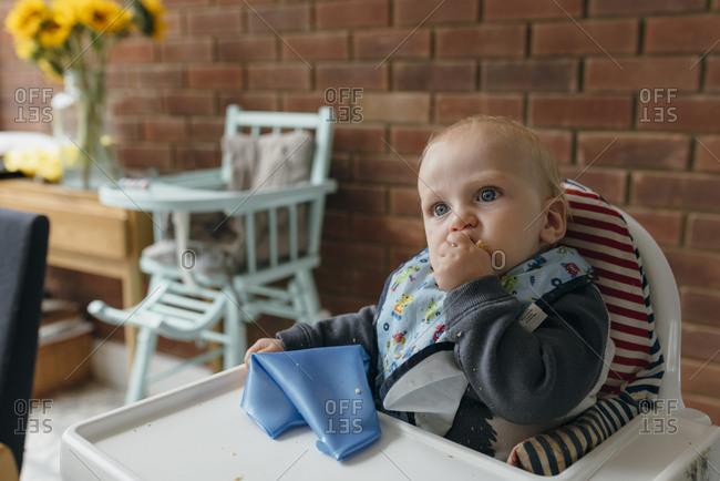 Baby boy eats food in high chair