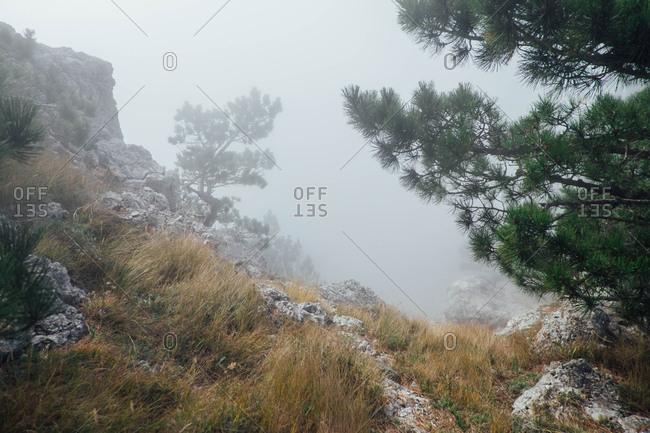 Foggy countryside, Crimean peninsula