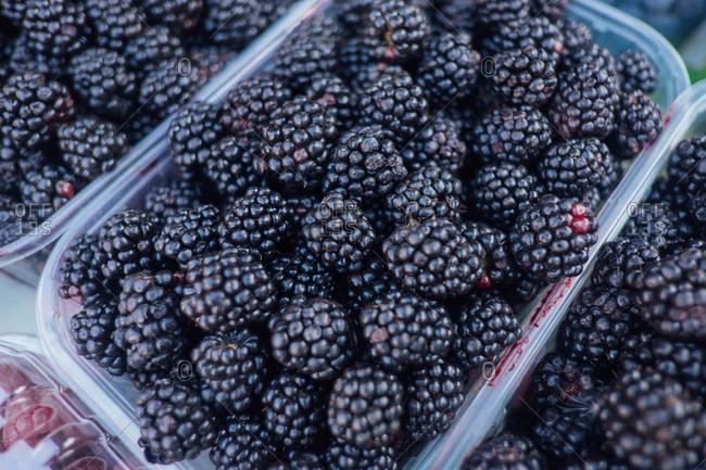 Blackberries at market