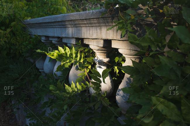 Lush vegetation around a guardrail
