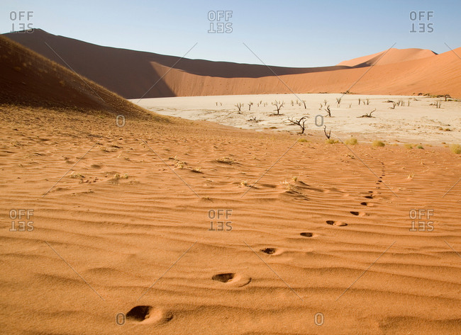 Single footprints in Soussusvlei desert