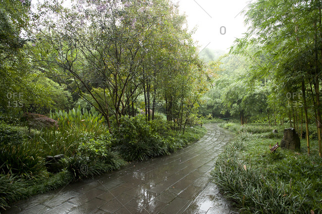 Chengdu, Sichuan Province, China - September 5, 2016: Green Path after Rain