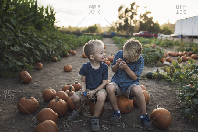 Brothers playing while sitting on pumpkins at farm
