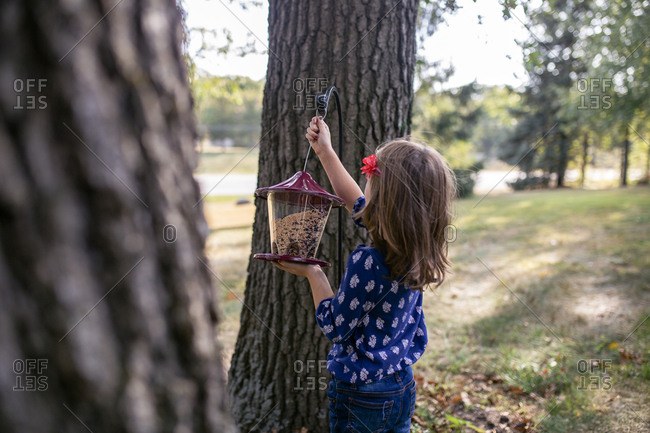 Girl hanging bird feeder on tree trunk while standing in yard