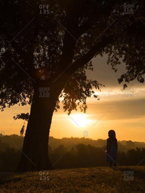 Child silhouette on hillside at golden hour