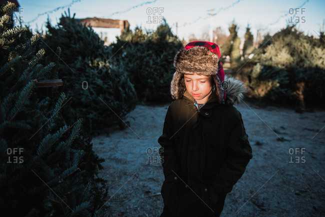 Boy looking for a Christmas tree on a tree farm