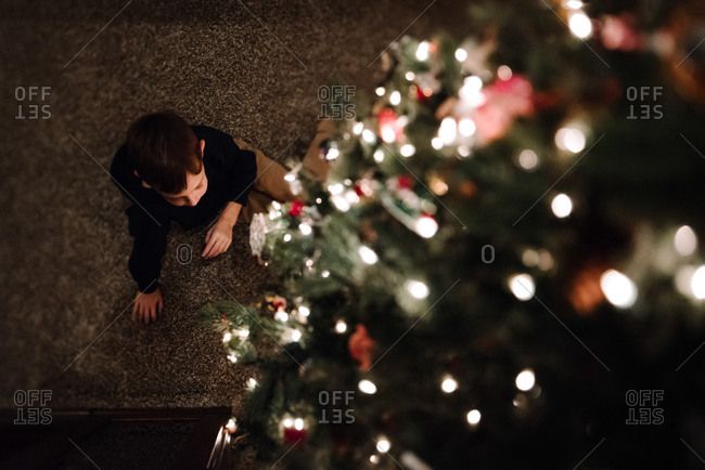 Boy sitting under a tree from above