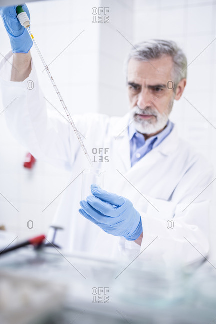 Scientist working in lab pipetting