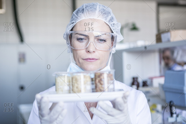 Scientist in lab holding seed samples