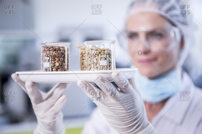 Scientist in lab holding tray with seed samples