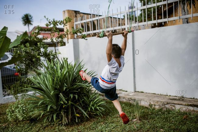 Little boy swinging on tree swing