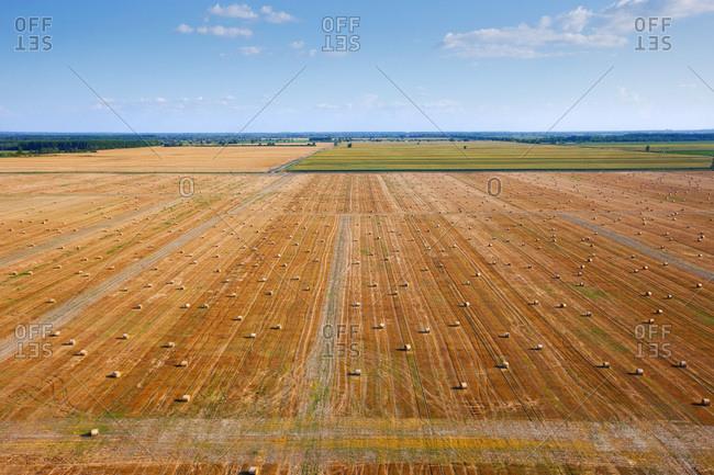 Plowed field with hay bales, Slavonia, Croatia