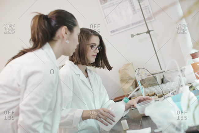 Female scientists working in lab