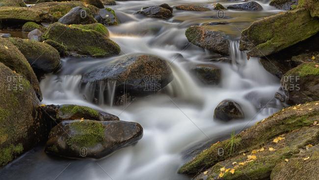 River Vydra, moss covered stones, Sumava National Park, Bohemia, Czech Republic, Europe