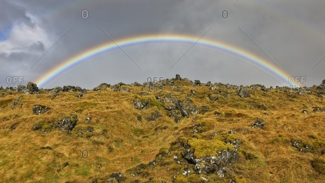 Rainbow, lava field, grass and lichens, Iceland, Europe