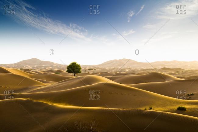 Rub' al Khali desert on the border of Oman and the Emirate of Dubai, Middle East, Southwest Asia