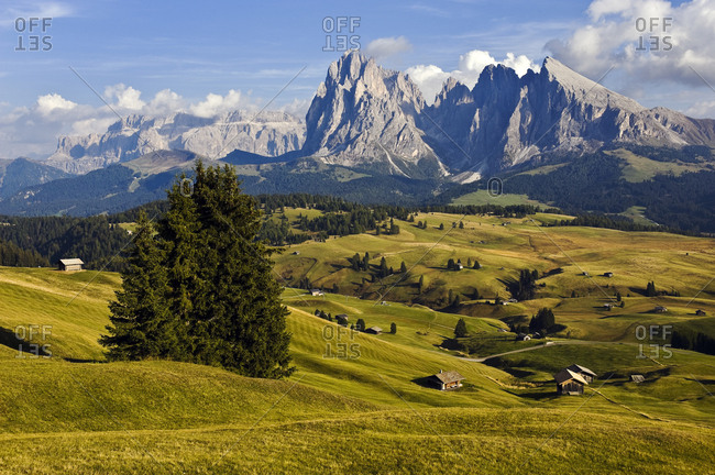 View over the Seiser Alm mountain pasture on Mt. Sassolungo and Mt. Sasso Piatto, Dolomites, South Tyrol, Italy, Europe