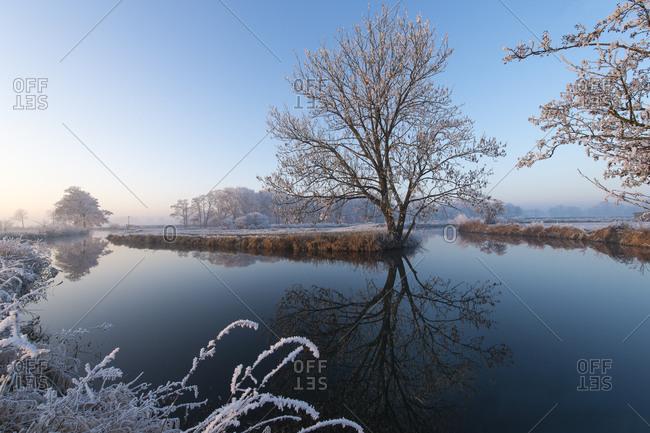 River landscape in winter, trees with hoarfrost, Erdinger Moos, Bavaria, Germany, Europe