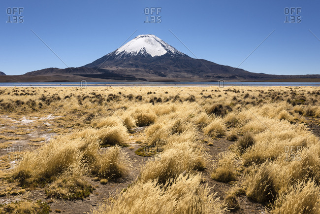 Volcano Parinacota, altitude 6348m, Lake Chungara, Lauca National Park, Putre, Parinacota province, Region de Arica y Parinacota, Chile, South America