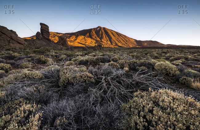 Volcano Pico del Teide, height 3718m, sunrise, National Park Parque Nacional del Teide, Tenerife, Canary Islands, Spain, Europe