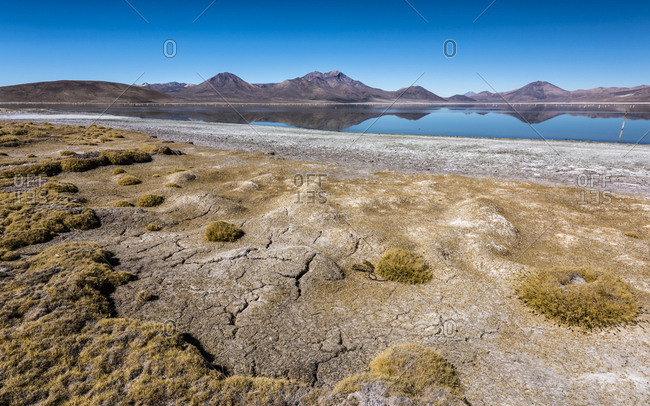 Salt Lake Salar de Surire, Monumento Natural, Reserva nacional Las Vicunas, Putre, Parinacota Province, Region de Arica y Parinacota, Chile, South America