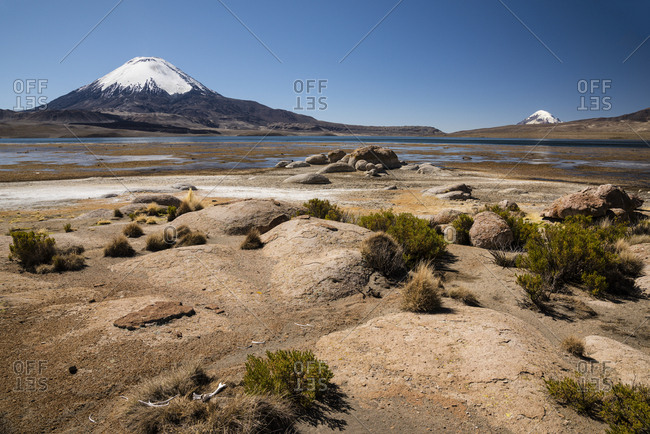Volcano Parinacota with animal bones in the foreground, altitude 6348m, lake Lago Chungara, Lauca National Park, Putre, Parinacota Province, Region de Arica y Parinacota, Chile, South America