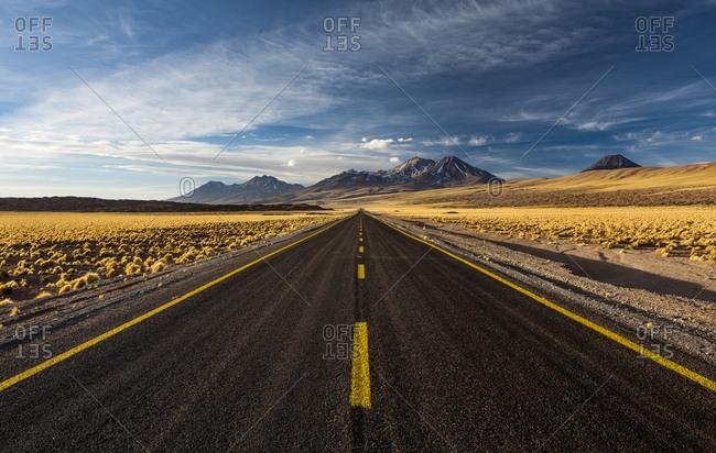 Road through the Atacama Desert, lined with yellow Peruvian feathergrass (Jarava ichu), behind volcanoes on the horizon, Ruta 23 road, San Pedro de Atacama, El Loa province, Antofagasta region, Norte Grande de Chile, Chile, South America