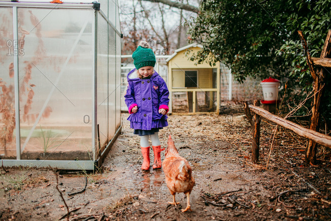 Girl standing outside chicken coop approaching chicken