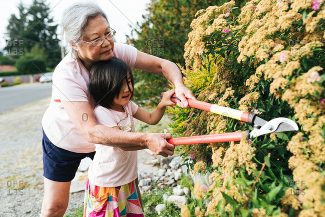 Little girl intrigued by grandmother gardening