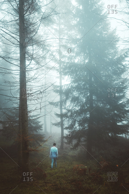 Unrecognizable man walking through forest on foggy day