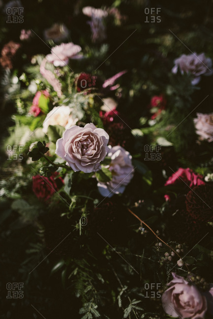 Beautifully lit roses and peonies
