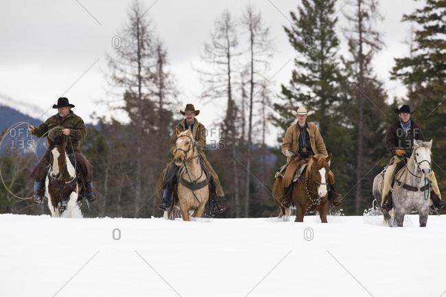 Four cowboys riding horses across a snowy field