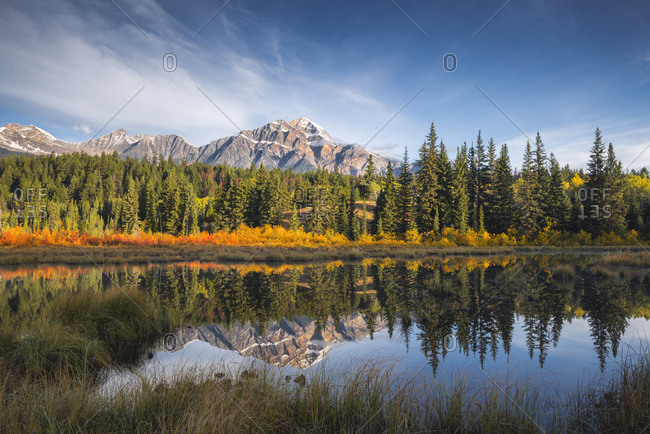 Pyramid Mountain reflected in a lake with autumn color, Jasper National Park, UNESCO World Heritage Site, Canadian Rockies, Alberta, Canada, North America