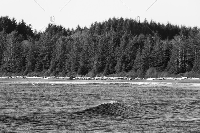 Wave in the ocean beside a forest in black and white