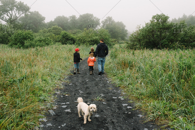 Father, children, and pet dog walking together on pathway through green field on a foggy day