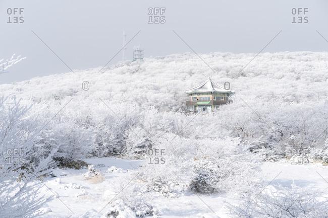 Jeju, South Korea - January 6, 2018: Snowy landscape and building on the slopes of Hallasan