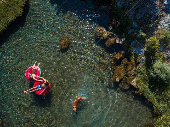 Couple On Inflatable Rings By Dog Swimming In Lake